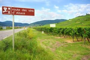 Rota do vinho, Alsace