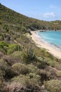 Praia Colombier, St. Barth, Caribe