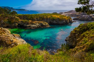 Point Lobos California State Reserve