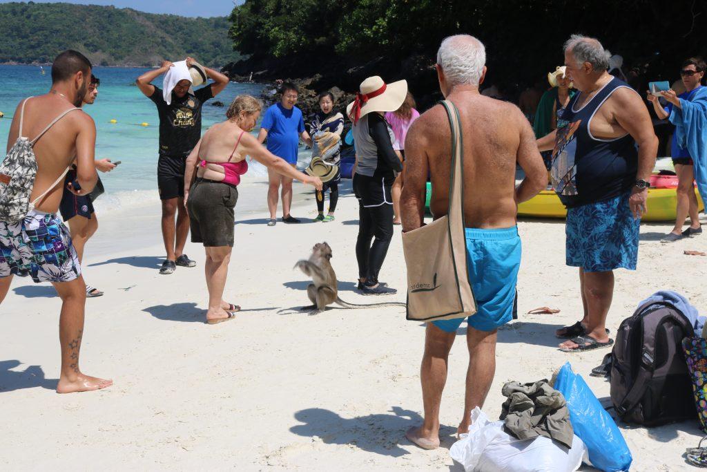 Monkey Beach, Phi Phi, Tailândia