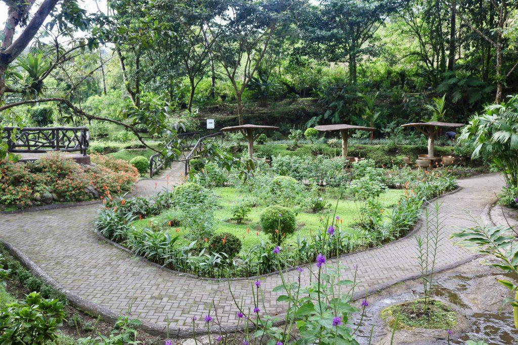 Rufous Garden, Costa Rica